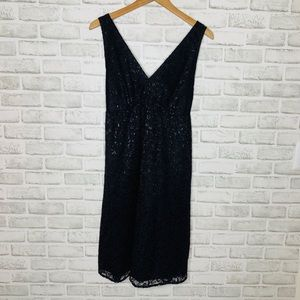 The Limited Black Lace Shimmer Dress